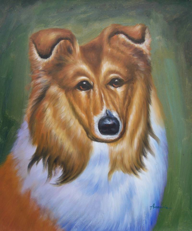 LASSIE THE DOG PORTRAIT ANIMALS OIL PAINTING