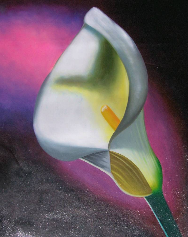 CALLA LILLY MODERN ART FLOWERS STILL LIFE OIL PAINTING