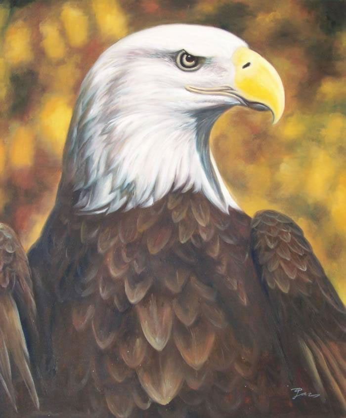 Animal Portrait Oil Painting #112:American Eagle
