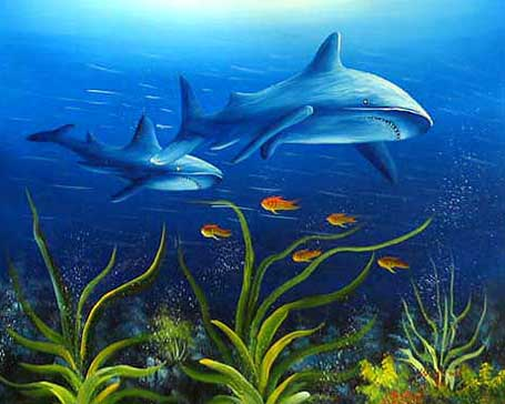 Animal Portrait Oil Painting #CST-31:Sharks Fish