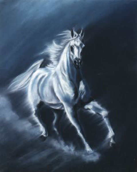Animal Portrait Oil Painting #SW571:White Galloping Horse