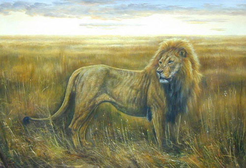 Animal Portrait Oil Painting #W004:Wildlife Safari Lion