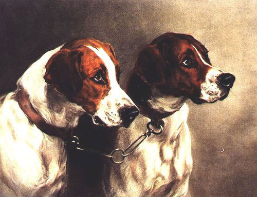 Animal Portrait Oil Painting #W018-662:Dogs Portrait
