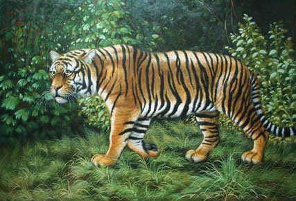 Animal Portrait Oil Painting #W045:Wilflife Tiger Forest