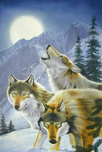 Animal Portrait Oil Painting #W079:Pack of Howling Wolves